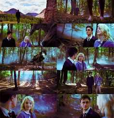 Luna and Harry