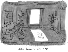 Solar Powered Cat Nap - Solar Humor