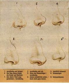 nose study - side view