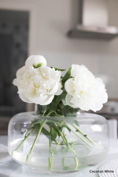 White Flower Arrangements, White Gardens, White Flowers, Flower Power, Diy And Crafts, Glass Vase, Sweet Home, About Me Blog, Coconut