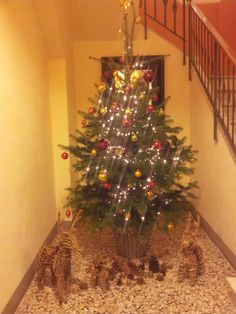 Buona Natale dall' Antica Torre di via Tornabuoni 1 #Christmas #tonabuoni1
