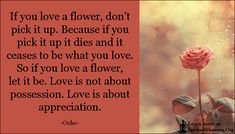 If you love a flower, don't pick it up. Because if you pick it up it dies and it ceases to be what you love. So if you love a flower, let it be. Love is not about possession. Love is about appreciation What Is Love, Love You, Let It Be, Inspirational Quotes With Images, Love Quotes, I Cried For You, Vacation Mood, Osho, Love Flowers