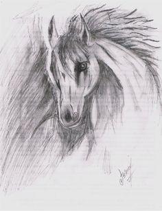 el retrato de un caballo solo a lápiz...
