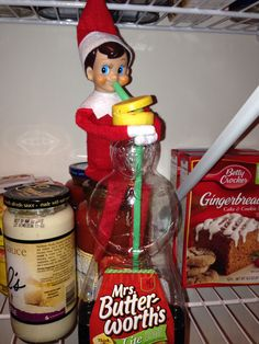 Jingle and his favorite drink