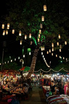 Chiang Mai night market transforms a three-block stretch of Chang Klan Road into a lively food court