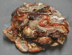 Mexican Laguna Lace Agate 3 pounds 1 ounces Lapidary Slabbing Cabbing Tumbling 3 Pounds, Crazy Lace Agate, Mexican, Stones, Crystals, Food, Rocks, Essen, Crystal