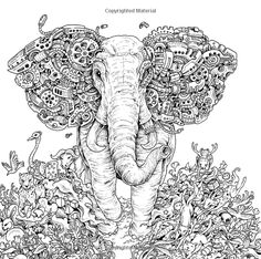Imagimorphia An Extreme Coloring And Search Challenge Kerby Rosanes 9780399574122 Books