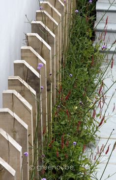 greencube garden and landscape design, UK: July 2013
