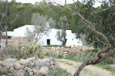 Ibiza : Santa Inés : Attitude at Rome