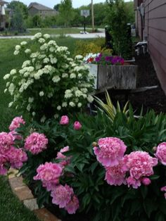 Glenda's Gardens - 2013