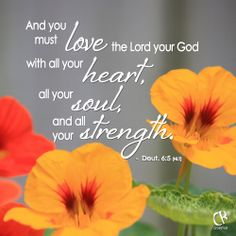 And you must love the Lord your God with all your heart, all your soul, and all your strength. - Deuteronomy 6:5 #NLT #Bible verse | CrossRiverMedia.com