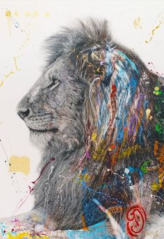 Art Love: Arno Elias with The Lost Series - The English Room, lion photo Mursi Tribe, Mixed Media Techniques, Powerful Images, African Tribes, Kids Room Art, Arno, African Animals, Natural World, Cat Art