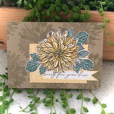 Homemade Greeting Cards, Hand Made Greeting Cards, Making Greeting Cards, Diy And Crafts, Paper Crafts, Fancy Fold Cards, Stamping Up Cards, Fall Cards, Sympathy Cards
