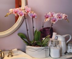 A double orchid planter can add life to your bathroom
