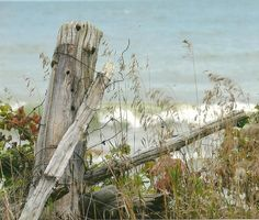 Old Split Rail Fence by the Lake Rustic Posts Nature Photography