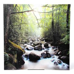 You'll love the River of Life Photographic Print on Wrapped Canvas at Wayfair - Great Deals on all Décor  products with Free Shipping on most stuff, even the big stuff.