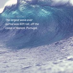 Epic surfing fact! Large Waves, Big Waves, Paddle Board Surfing, Paddle Boarding, Surfboard, Outdoor, Inspiration, Outdoors, Biblical Inspiration