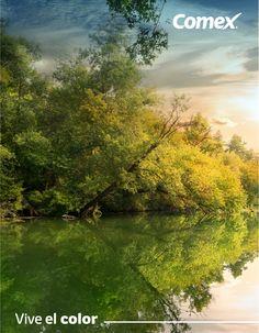 El bosque encierra una fiesta de colores.  ¡Inspírate!  #Comex #color #nature