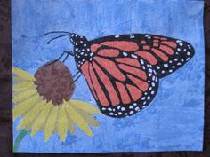 butterfly_collage