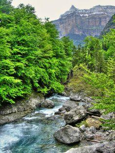 Punta Gallinero y río Arazas en el puente de Arripas, Ordesa, Pirineo  Spain