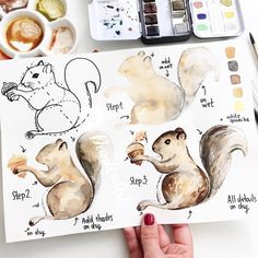 Tiere Zeichnen Lernen Learn to draw animals, draw squirrels in four steps, painting ideas for beginn Watercolor Face, Easy Watercolor, Watercolour Tutorials, Watercolor Animals, Watercolor Techniques, Watercolor Landscape, Watercolor Paintings, Painting Techniques, Watercolor Splatter