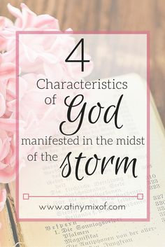 4 Characteristics of God manifested in the midst of the Storm.  If you are in a storm right now, God can manifest His character in many ways.  Learn more about 4 of the multiple characteristics of God manifested in while we are in trouble. http://www.atinymixof.com/book-reviews/miscarriage-god-and-2-books-giveaway/