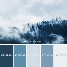 Green Pine Trees Covered With Fogs Color Palette – Ave Mateiu Dorm Color Schemes, Dorm Room Colors, Best Bedroom Colors, Blue Color Schemes, Color Combos, Hex Color Palette, Bedroom Colour Palette, Blue Colour Palette, Color Palettes