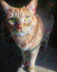 pixie. full-time interdimensional feline being part-time house cat.  thanks to google's AI deep dream software. #catsarealiens @cats_of_instagram #deepdream by purrmz