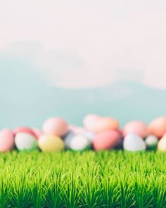 easter still life background in pastel colors