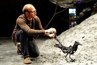 'Crow' Features Birds by Handspring Puppet Company