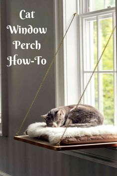Cat Window Perch Treat your feline by building her a place in the sun with a window seat that lets her scale new heights, settle in and watch the world (or nap!Learn how to build a cat window perch—perfect for kitty to scale new heights, settle in, Diy Hanging Shelves, Floating Shelves Diy, Diy Cat Shelves, Cat Window Perch, Cat Window Shelf, Cat Window Hammock, Diy Cat Hammock, Diy Cat Bed, Cat House Diy