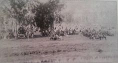 A Light Horse camp along the river around 1892 Horse Camp, I Remember When, World War, Horses, River, Memories, Painting, Outdoor, Art