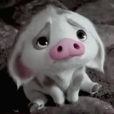 "Funny GIF - Pua, Piglet of Disney cartoon ""Moana"" . Cartoon Cartoon, Funny Cartoon Faces, Tumblr Cartoon, Moana Disney, Disney Disney, Funny Disney Cartoons, Humour Disney, Moana Gif, Funny Videos"