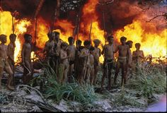 lord of the flies literary elements essay