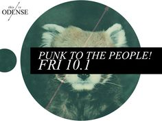 Punk to the people! Six unique music experiences. #concert #punk #StudenderhusOdense #SpaghettiCassettiRecords #FrightEye (Aarhus), #LessWin (Copenhagen), #HappyHookersForJesus (Aarhus), #BedBugs (Aarhus), #AcidTwin (Aarhus) og #SpyInTheMes (Odense). #friday #odense #thisisodense @studenterhusodense Læs anbefalingen på: www.thisisodense.dk/7094/punk-til-folket