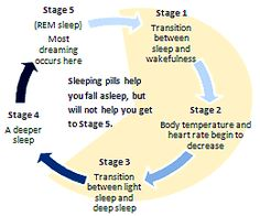 Sleep_cycle_new_1.png (260×216)