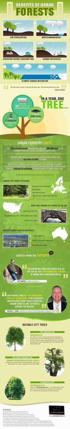 Urban Forestry Benef
