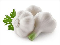 Most effective natural antibiotics and anti-viral remedies for flu, viral infections, colds and coughs including herbs, foods and essential oils. Raw Garlic, Fresh Garlic, Garlic Oil, Mulberry Fruit, Garlic Extract, La Germination, Garlic Health Benefits, Garlic Seeds, Potager Bio