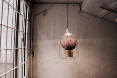 On est fans d'objets design double-emploi : voici ici des plantes d'intérieur... Qui sont aussi des lampes !  Ces objets presque d'art sont faits de verre et de bois. On peut les poser ou les accrocher et en plus d'apporter de la verdure à un intérieur elles peuvent éclairer ses recoins les plus sombres.  Travail incroyable sur ces lampes Baby Milo   www.elise-franck.com  #elisefranck #elisefranckconseil #design #meuble #deco #decoration #investissementlocatif #investissementlocatifmeublé…