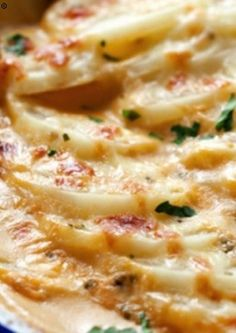 Scalloped Potatoes with Cheddar and Parmesan