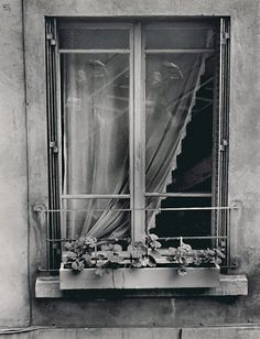 Ilse BingDouble auto portrait in the window, New York. 1947 Looking Out The Window, Through The Looking Glass, Open Window, Rear Window, Old Photography, Street Photography, Rustic Window Frame, Gelatin Silver Print, Through The Window