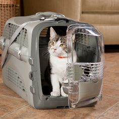 cat kennel carrier clear front car seat strap - Google Search