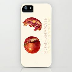 Pomegranate, Punica granatum iPhone & iPod Case by Cindy Lou Bailey  - $35.00.  A cutaway and a slice of the delicious fruit: Pomegranate, punica granatum. Painted in watercolor on Hot Press Arches watercolor paper.