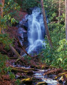 Log Hollow Falls, #waterfall in Pisgah National Forest near Asheville, North Carolina.