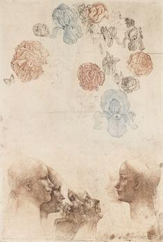 Botanical Illustration, Illustration Art, Dream Drawing, Smart Art, Vanitas, Memento Mori, Painting & Drawing, Printmaking, Graphic Art