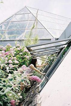 Amazing roof top garden