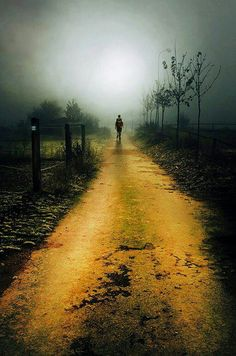 The only path that is right for you is the one your heart tells you to follow......