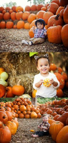 Dallas Child Photographer | Pumpkin Patch