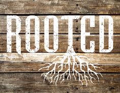 Rooted Sermon Series by 320 Creative Check out new work on my @Behance portfolio: http://be.net/gallery/38370833/Rooted-Sermon-Series