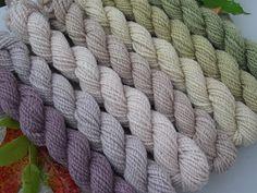 wolle-garn-und-fadenzauber: Magie der Pflanzenfarben
